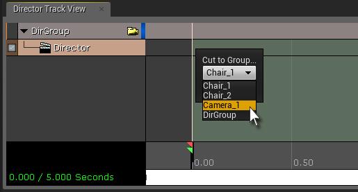 Director Camera Select.jpg