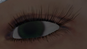 017 Brows Result.png